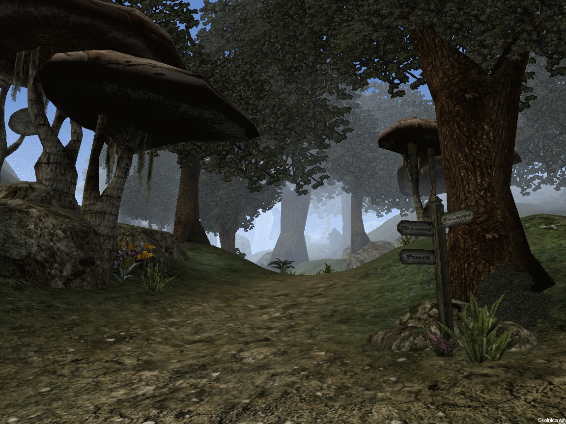 world of morrowind